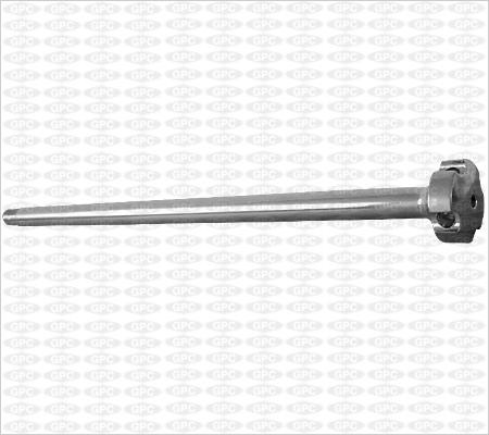 Tige guide pour clou élastique